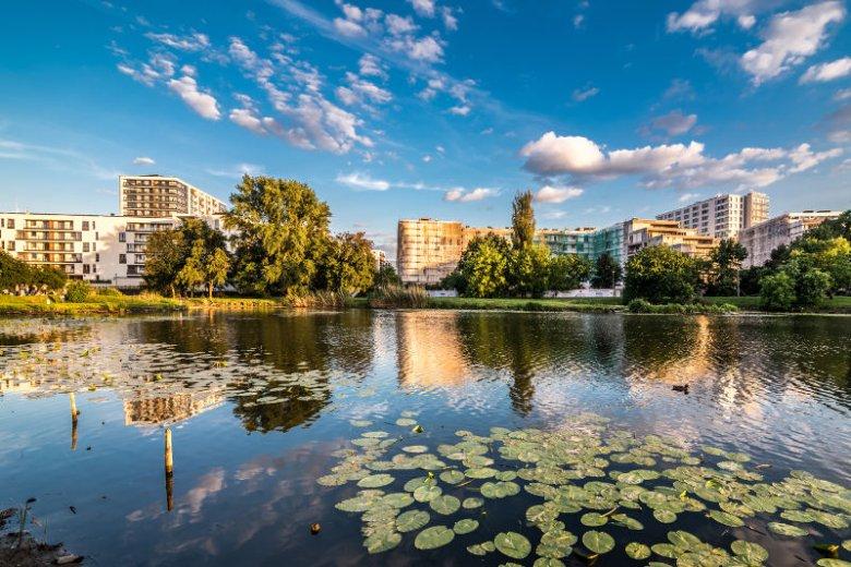 Osiedle Saska, zdaniem Jarosława Szanajcy jedno z najlepiej zaprojektowanych osiedli.