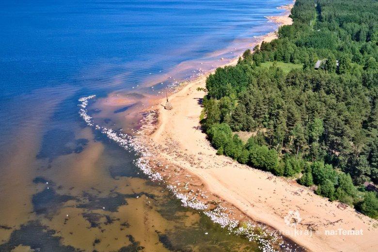 Latarnia morska Kurmrags na wybrzeżu Bałtyku