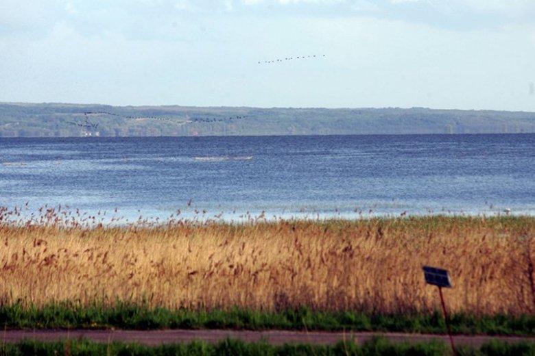 Port elbląski nie będzie ani współpracował ani rywalizował z gdańskim w odczuwalnym zakresie. Zagrożona natomiast jest przyroda Mierzei Wiślanej.