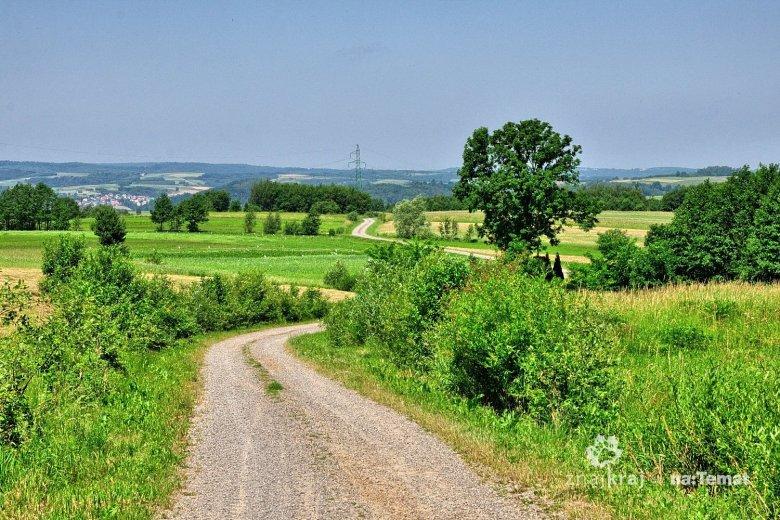 Green Velo biegnący przez Pogórze Dynowskie