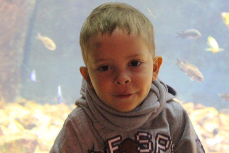 Filip Malinowski, czterolatek, który cierpi na chorobę Niemmana Picka typu C zwaną potocznie dziecięcym Alzheimerem.