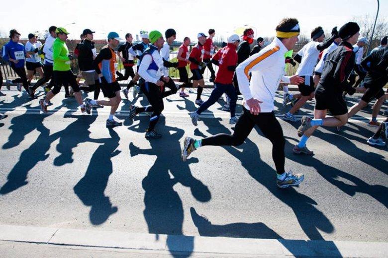 Tegoroczny półmaraton w Poznaniu - na każdej takiej imprezie są i doświadczeni i początkujący biegacze