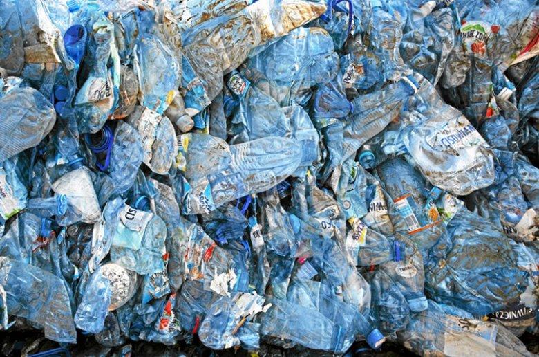Plastikowe butelki zwykle pogniecione trafiają na śmietnik. A można z nich jeszcze zrobić użytek