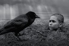 """""""Malowany ptak"""" to brutalny film pokazujący piekło wojny z perspektywy kilkuletniego chłopca. Uciekł przed Holocaustem, ale spotkało go niewyobrażalne okrucieństwo ze strony zwykłych ludzi"""