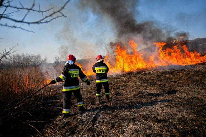 Nowa ekipa wprowadziła do Państwowej Straży Pożarnej swoich ludzi. Zdaniem strażackich generałów, w formacji źle się dzieje.