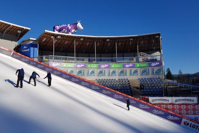 Podczas zawodów w Wiśle nad skocznią pojawiła się fioletowa krowa Milki. To znak, ze polscy skoczkowie mają nowego sponsora.