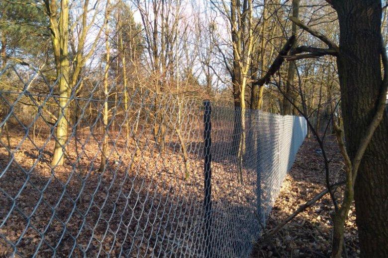 Teren został ogrodzony, ale dalsze prace wstrzymano.