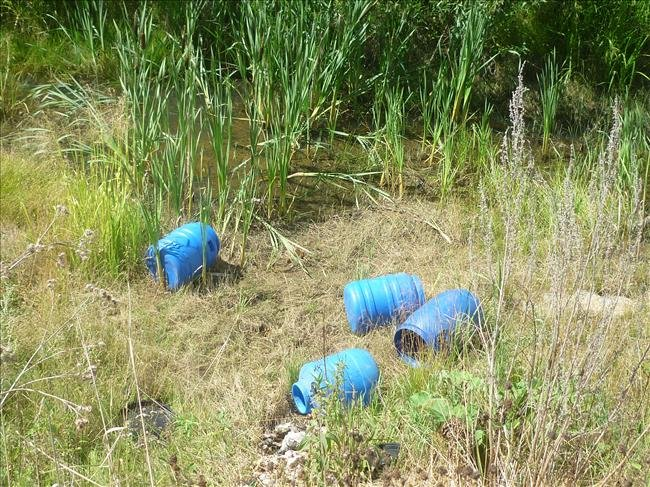 zwłoki znaleziono w 4 beczkach porzuconych w lesie