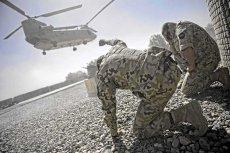 Polscy komandosi zatrzymali jednego z najgroźniejszych terrorystów w afgańskiej prowincji Ghazni.