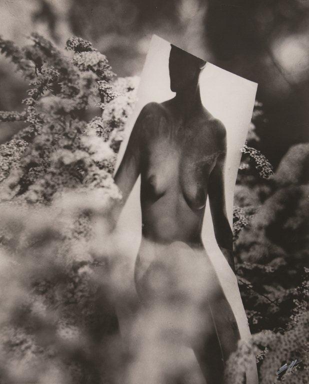 fot. Krzysztof Pruszkowski, Mannequines de l'Agence ''Christa Modelling'', 1975