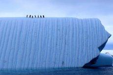 Krajobraz arktyczny.