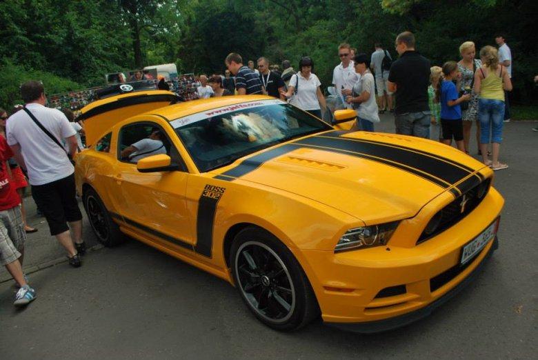 Mustang Race 2013