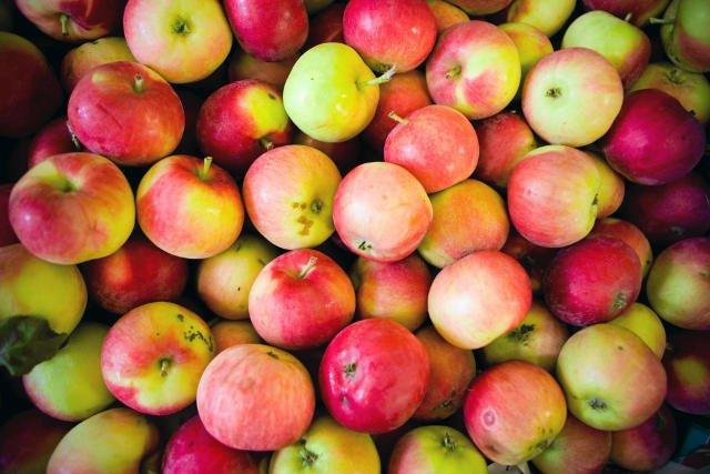 W sezonie 2012/2013 Polska była największym na świecie eksporterem jabłek