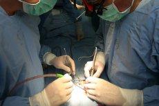 Polscy kardiochirurdzy leczą wady serca na dobrym europejskim, a nawet światowym poziomie.