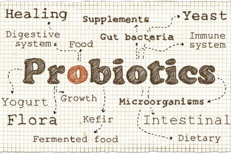 Probiotyków na rynku jest mnóstwo. Jak wybrać odpowiedni?