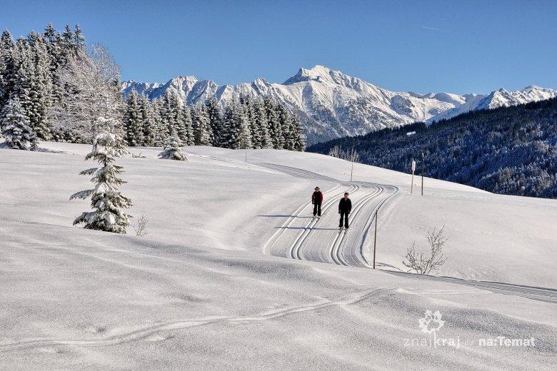 Narciarze biegowi w alpejskiej scenerii