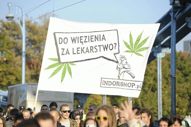 Marihuana nie jest lekiem na wszystkie choroby.