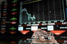 Gwałtowny spadek cen akcji największych spółek.