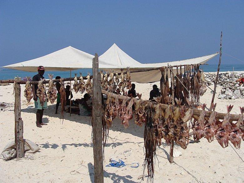 Suszone ryby i ośmiornice to podstawa wyżywienia morskich koczowników