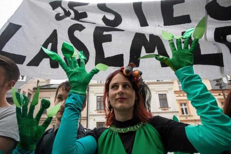 Ekolodzy uważają, że projekt zmian proponowanych przez ministra Szyszkę to zamach na środowisko