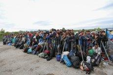 Czy nieścisłości w danych mogą wskazywać na jakieś nadużycia? Granica Serbsko–Chorwacja przeżywa oblężenie.