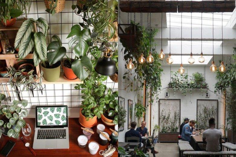 W dzisiejszych czasach wydajnie można pracować nie tylko w biurze, ale też w domu, co-workingu czy nawet kawiarni