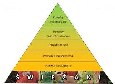 """Nowa """"piramida potrzeb Maslowa"""""""