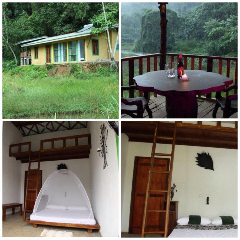 Sinharaja Forest Edye - Guest House został urządzony nowocześnie i wygodnie. Deniyaya, Sri Lanka
