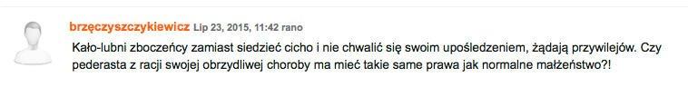 Komentarz umieszczony pod tekstem dot. homoseksualistów na portalu fronda.pl