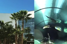 Aquapark Reda to jedyne miejsce w Polsce, gdzie można zjechać przeszklonym tunelem do akwarium z rekinami.