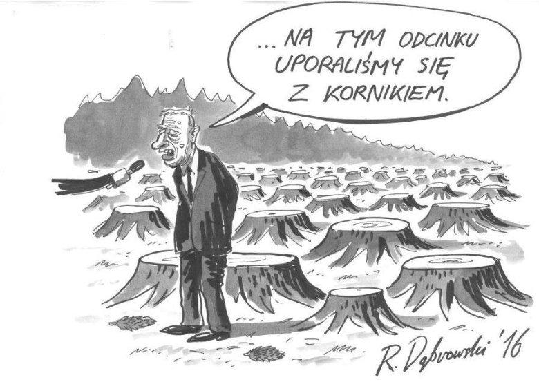 za: http://pracownia.org.pl/rysuje-ryszard-dabrowski
