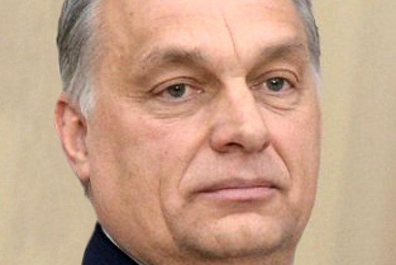 Przewodniczącym węgierskiego Fideszu jest Viktor Orbán.