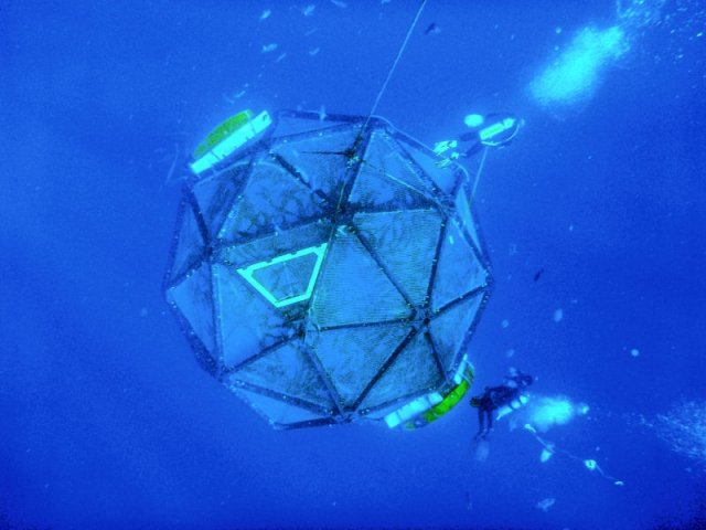 Vellala Aquapod - jeden z testowanych systemów offshore. Swobodnie dryfujące klatki z seriolami.