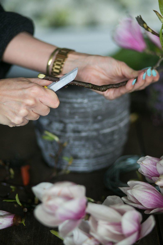 Aby przedłużyć żywotność kwiatów, należy je przycinać. Te o zdrewniałych łodygach dobrze jest sparzyć wrzątkiem i dopiero potem wstawić do zimnej wody.