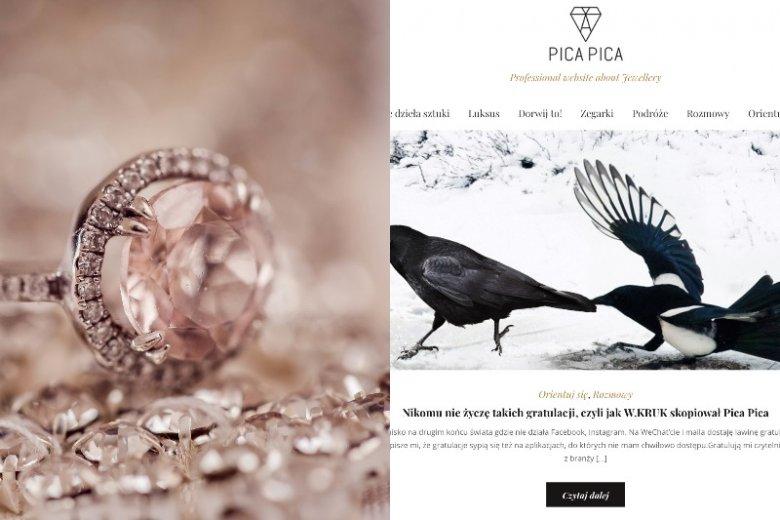 Czy W.Kruk skopiował koncepcję bloga Pica Pica? Ta sprawa poruszyła internautów