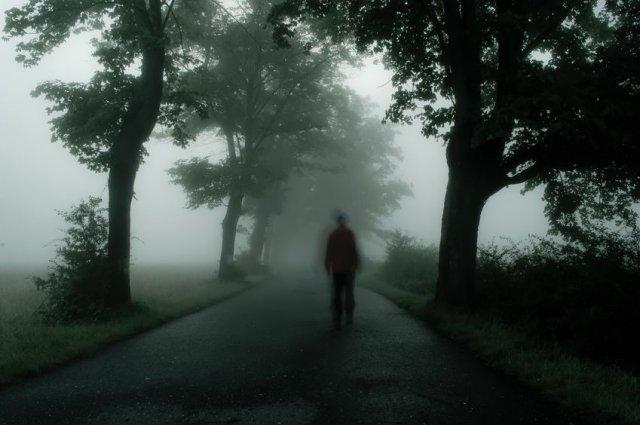 Z definicji koszmar to nic przyjemnego, ale jak się okazuje mózg człowieka potrzebuje tych przerażających sennych opowieści