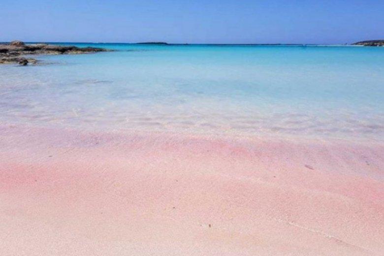 Wyjątkowy, różowy piach sprawia, że plaża jest bardzo często fotografowana
