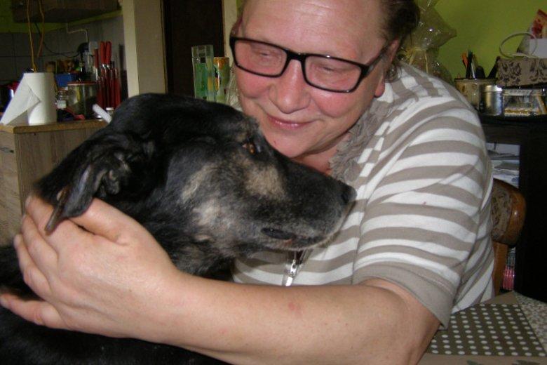 Staruszkowo to psie hospicjum dla starych i schorowanych czworonogów.