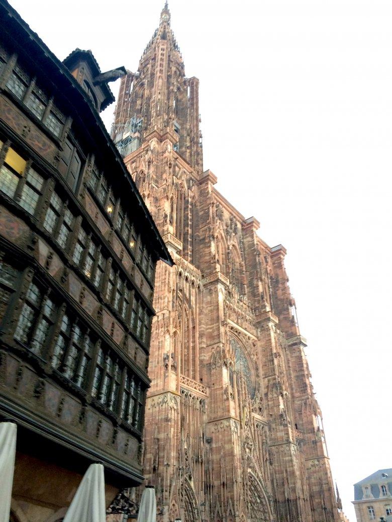 Katedra Notre-Dame, Strasburg, 2016