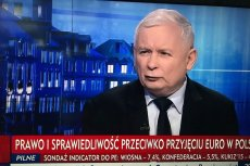 Jarosław Kaczyński najpierw straszył, a potem... pochwalił Danutę Holecką.