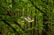 W drzewach - kryjówka w Nałęczowie