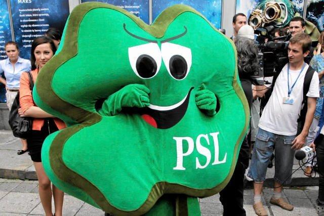 PSL wchodzi w koalicję z PiS w powiecie chełmskim.