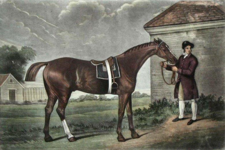 Eclipse to imię legendarnego konia wyścigowego z Anglii, który wygrał aż 18 wyścigów z rzędu. Na jego część ochrzczono nowy model samochodu ze stajni Mitsubishi