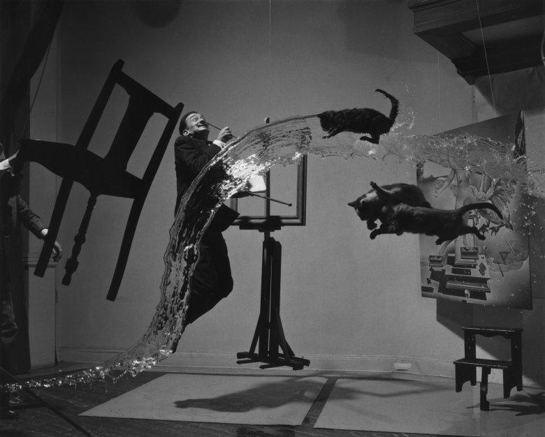 """""""Dali Atomicus"""". Co ciekawe (i nieco straszne), żeby uzyskać efekt x """"latających"""" kotów pomocnicy fotografa kilkunastokrotnie podrzucali żywe zwierzęta."""