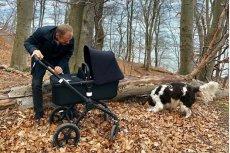 Donald Tusk wybrał się na spacer w z wnuczką psem Portosem.