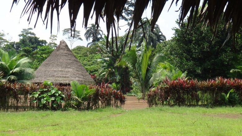 Typowa chata Achuar