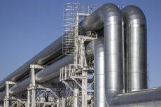 Grupa japońskich polityków ponownie podjęła temat budowy rosyjsko-japońskiego gazociągu