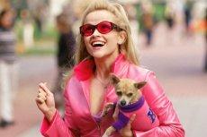 """W """"Legalnej blondynce"""" jest i różowo, i feministycznie"""
