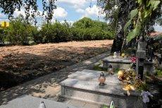 Podopieczną domu opieki pochowano w miejscu, które oburzyło wiele osób. /Zdjęcie poglądowe/