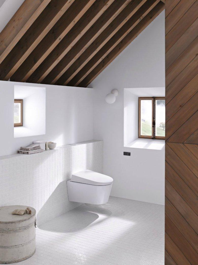 Wyposażenie niewielkiej łazienki bywa wyzwaniem oraz szkoleniem w sztuce kompromisów. najlepszymi mediatorami są producenci armatury, tworzący urządzenia wielofunkcyjne.